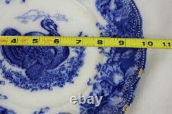 Antique Wedgwood Clytie Blue Scallop, Embossed Flow Blue Turkey 10 Dinner Plate
