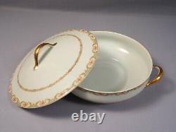 Limoges France Pink Blue CH Field Haviland GDA DINNER SET Plates Tureen Platter