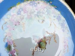 Royal Worcester Hand Painted Insect Floral Antique Cabinet Plate Pair Set 1880