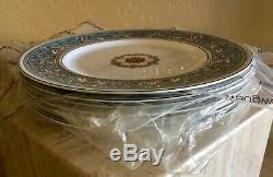 Set of 7 Brand New Wedgwood Florentine Turquoise 10.75 Dinner Plates